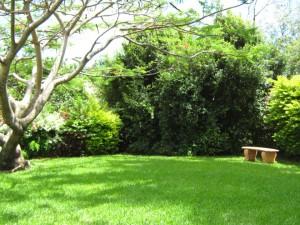 Buffalo garden, piknik