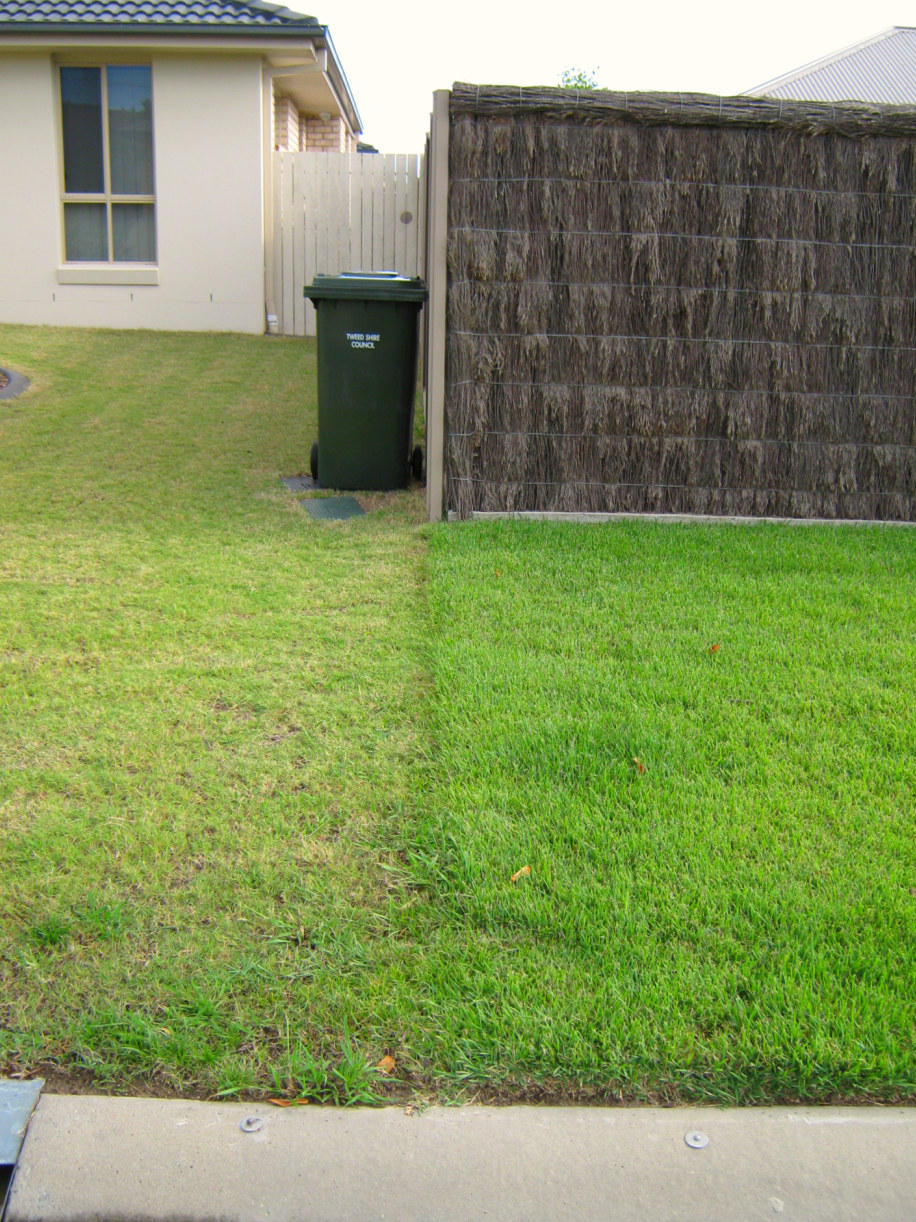 Lawn mowing heights coastal turf for How often should you mow your lawn