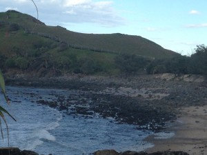 Cabarita Beach Headland