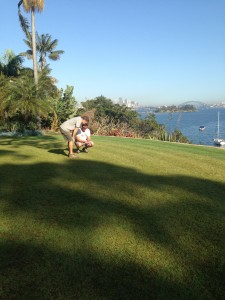 Choosing a new lawn, it takes a little bit of chatting