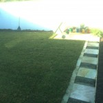 Feature Paving with Turf installation