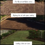 Take out your old horrid grass and replace with a new gorgeous green lawn.