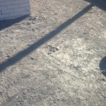 Dirt around the house